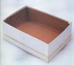 empty shoe box